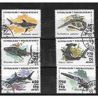 Timbre Thématique du Monde - Requin - Republic Madagascar - (T045)