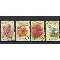 Lot de Timbres Thématique - Fleurs - Russie CCCP - (T082)