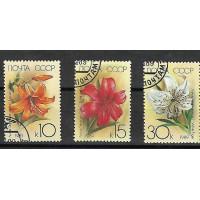 Lot de Timbres Thématique - Fleurs - Russie (CCCP) - (T175)