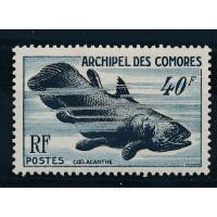 Comores - Numéro 13 - Neuf avec Charnière