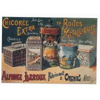 Carte Chicorée Extra Alphonse Leroux - Floriscope