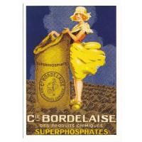 Carte Postale 10x15 Cie Bordelaise des produits chimiques superphosphates - Centenaire Edtions
