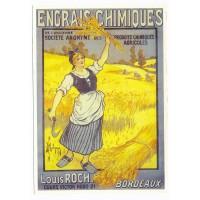 Carte Postale 10x15 Engrais chimique - Centenaire Editions