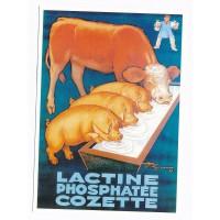 Carte Postale 10x15 Lactine phosphatée Cozette - Centenaire Editions
