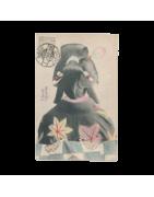 Cartes Postales du Japon, Cartes anciennes début 1900